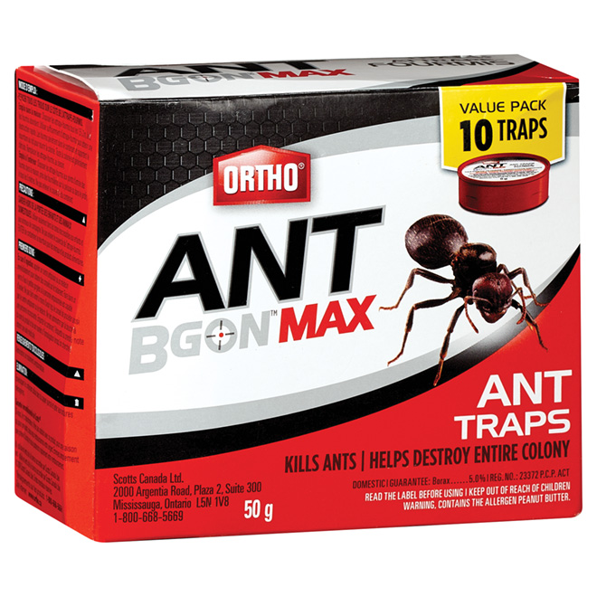 Ant Traps - Pack of 10 - 50 g