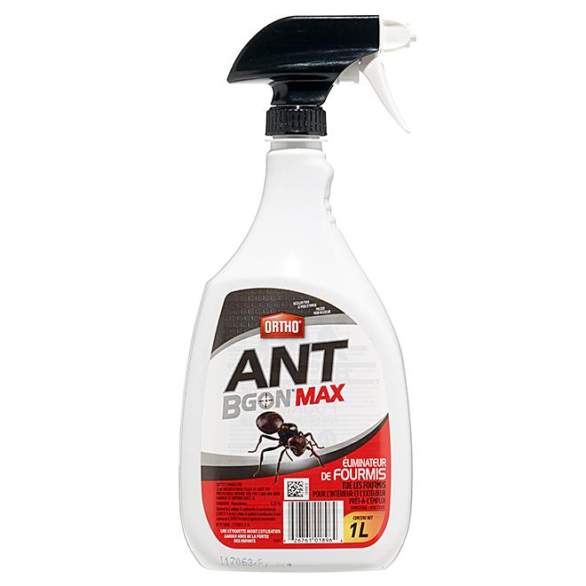 Éliminateur de fourmis à pulvériser, Ant B Gon Max(MC), 1 L