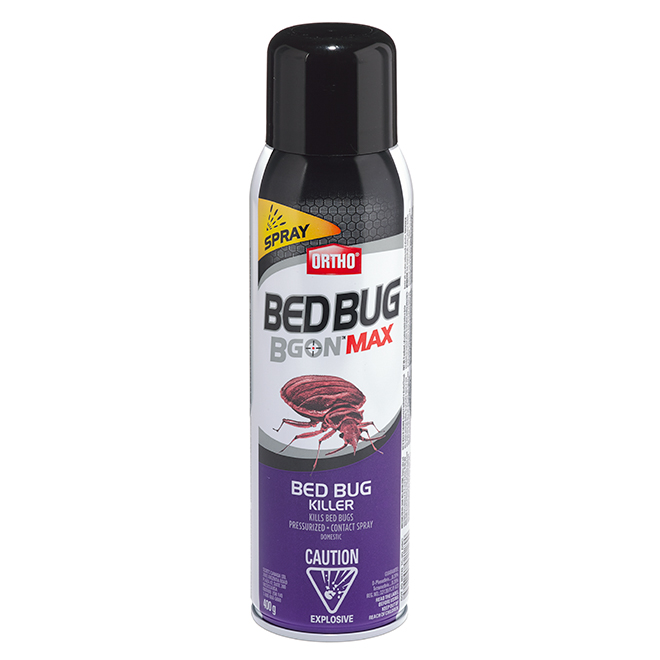 Bed Bugs Insecticide Foam - 400 g