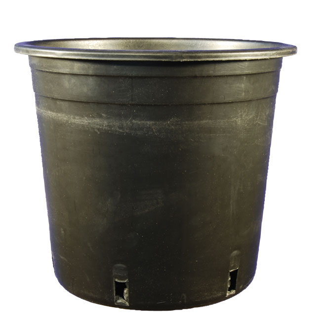 Planter - Grower Pot - 6.3'' - Black