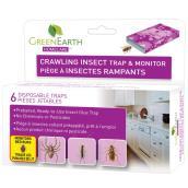 Piège à insectes rampants, paquet de 6
