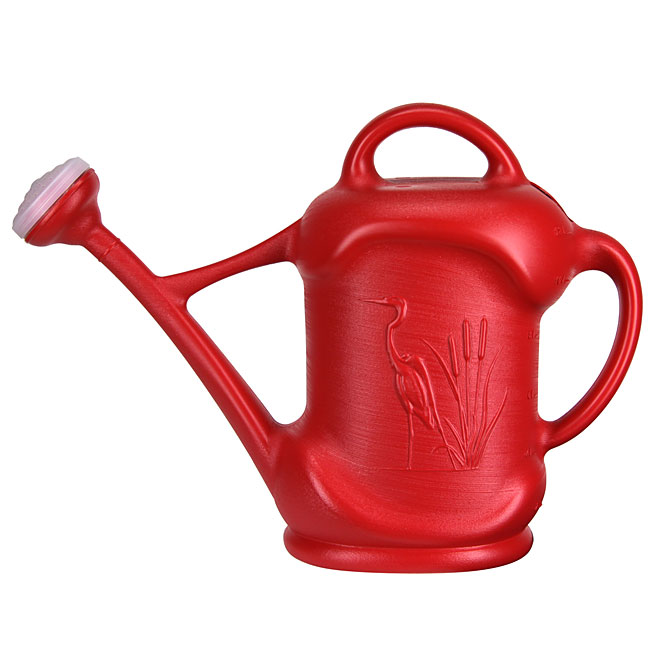 DCN Watering Can Floral Design - Plastic - 11.3-Litre