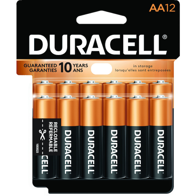 Paquet de 12 piles AA