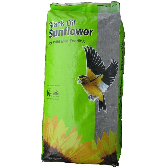 Black Oil Sunflower Seeds for Birds - 50lbs