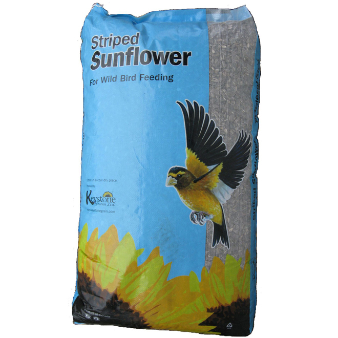 Striped Sunflower Seeds for Birds - 18kg