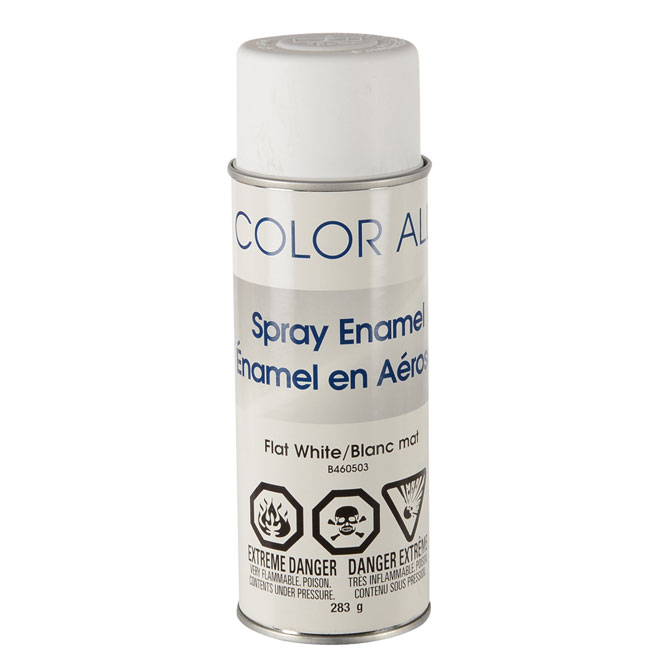 Enamel Spray Paint - Flat White
