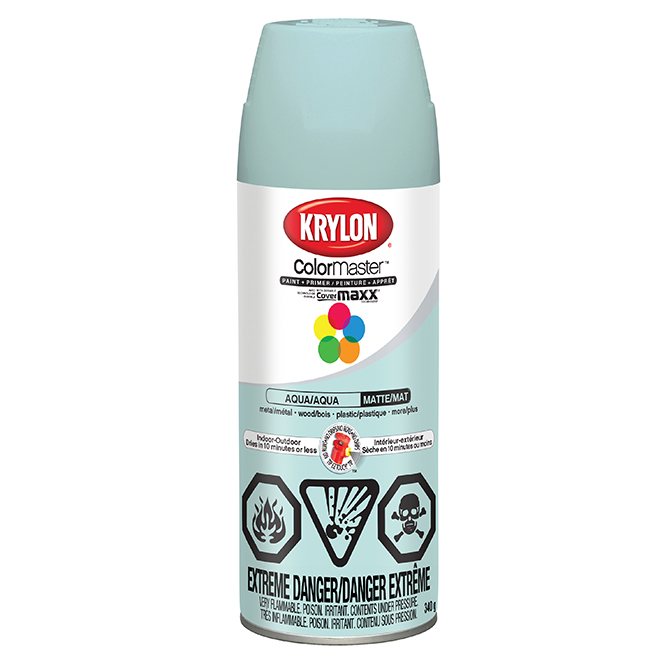 Spray Paint and Primer 2-in-1 - 340 g - Aqua