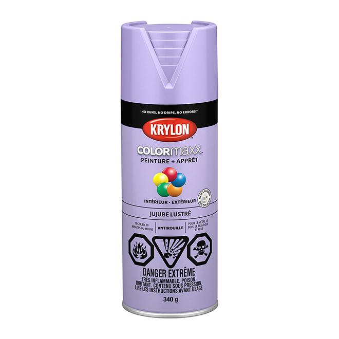 Peinture et apprêt COLORmaxx, aérosol, 340 g, jujube