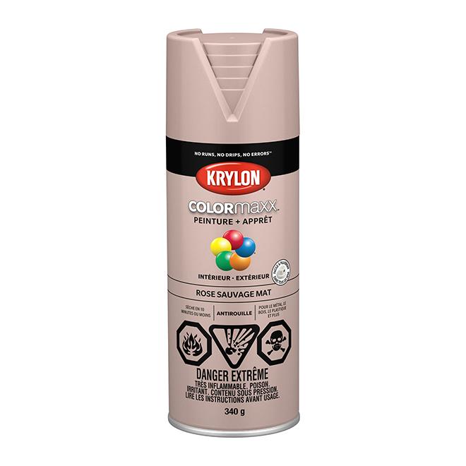 Peinture et apprêt Krylon Colormaxx, 340 g, rose sauvage