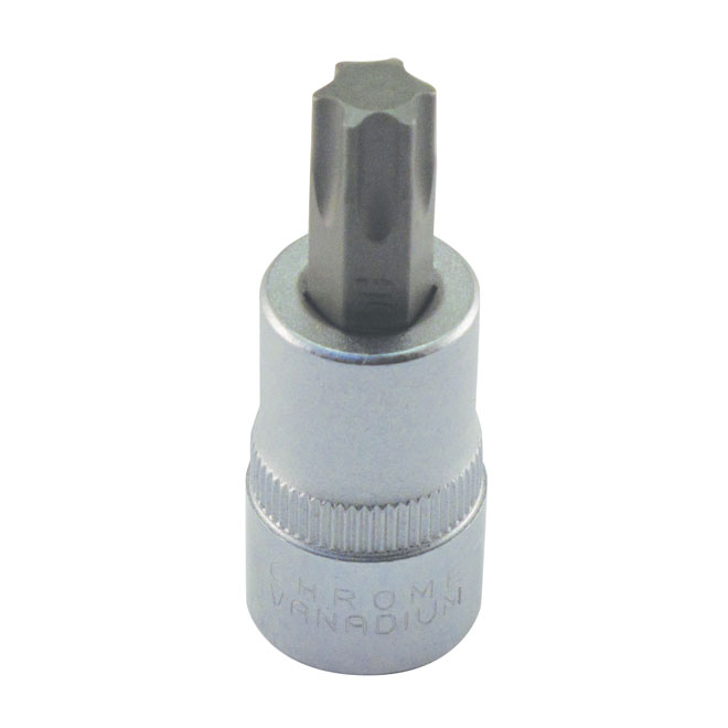 "Torx Bit Socket - Steel - 3/8"" x T50"