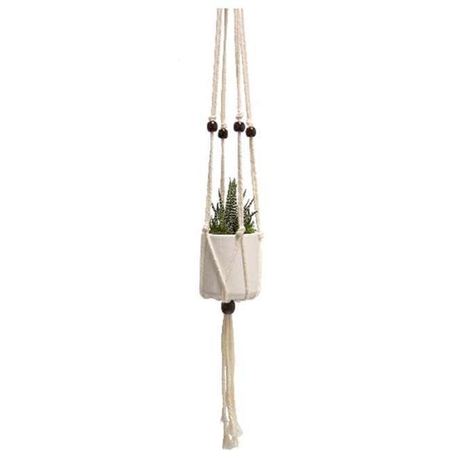Hanging Succulent Plant - Modern - 26""
