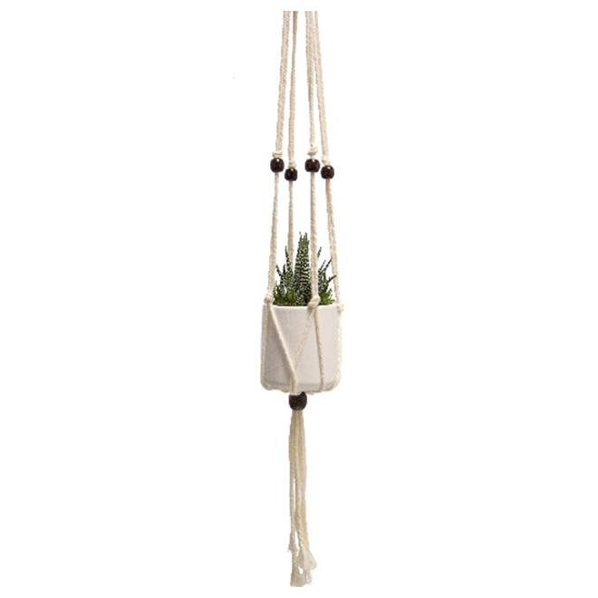"Plante succulente suspendue, moderne, 26"""