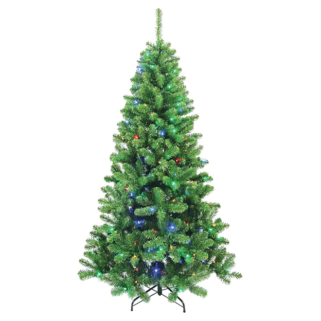 Arbre de Noël illuminé Berwyn, 300 DEL, 860 pointes, 7'