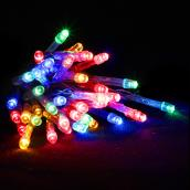 Holiday Living Indoor Outdoor Battery Operated Light Set 100 LED 5 mm - Multicolour