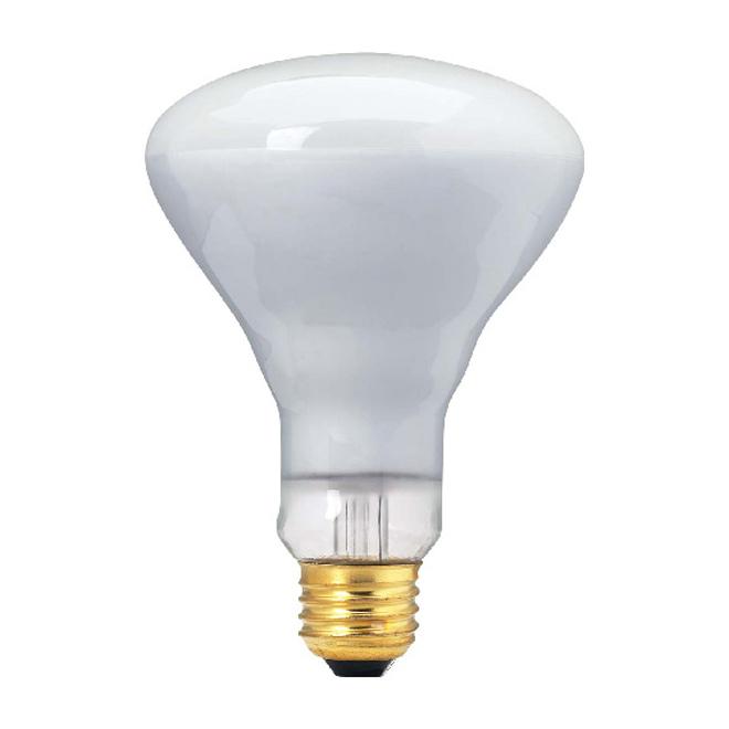 BR30 Incandescent Floodlight Bulb - 65 W - White - 4/Pack