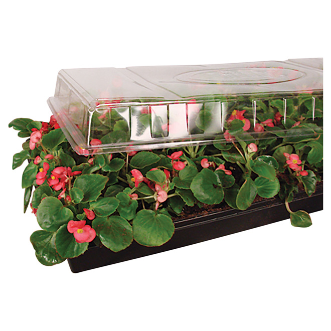 "Jiffy Mini Greenhouse Dome - 11"" x 22"""