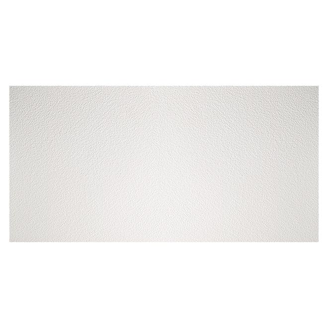 Ceiling Tiles - 2' x 4' - White - Box of 10