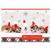 Hallmark Christmas Card - Puppies - Multicolour - 16-Pack