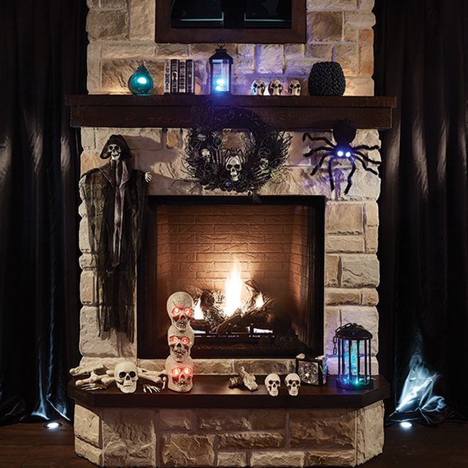 Holiday Living Decoration - Skull Bag - Plastic