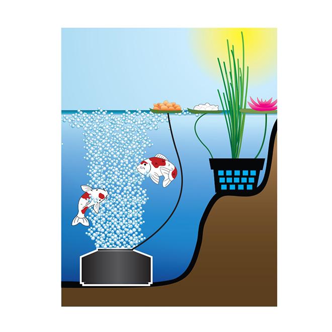 SMARTPOND(R) Pond Aerator