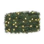 Garland - Indoor/Outdoor - 100 Lights - 36'