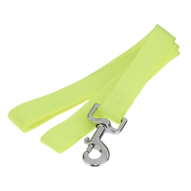 Dog Leash - Large - 1'' x 47'' - Assorted