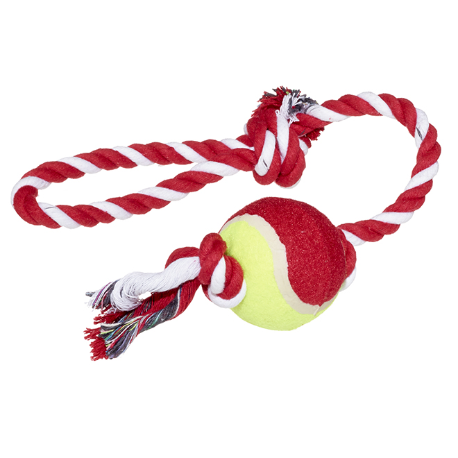Rope With Tennis Ball For Dogs Assorted Rona