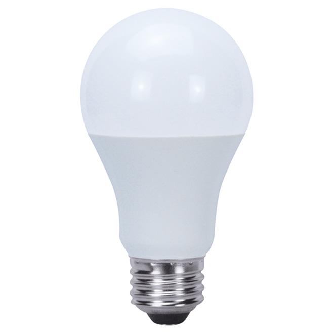 LED Bulb - A19 - 5.5 W - Bright White - 6/Pk