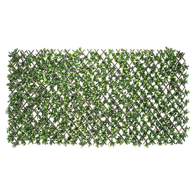 ''Gardinia'' Extendable Lattice - Wood/PE - 40'' x 80'' - Green