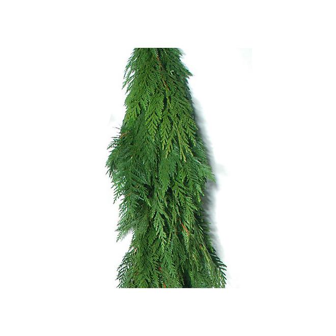 Guirlande de cèdre de l'ouest naturelle, vert, 20 pi