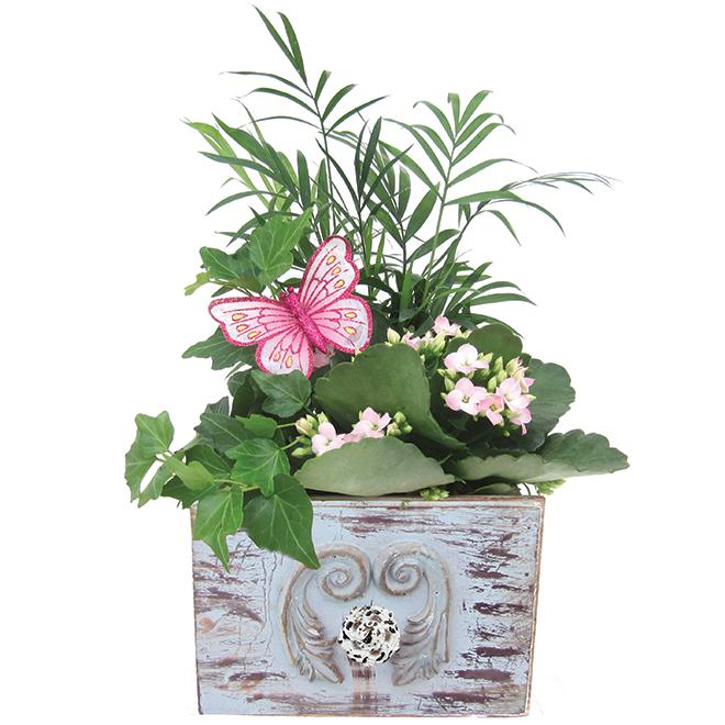 Bayview Flowers Vintage Garden - Wooden Box - 5.5-in