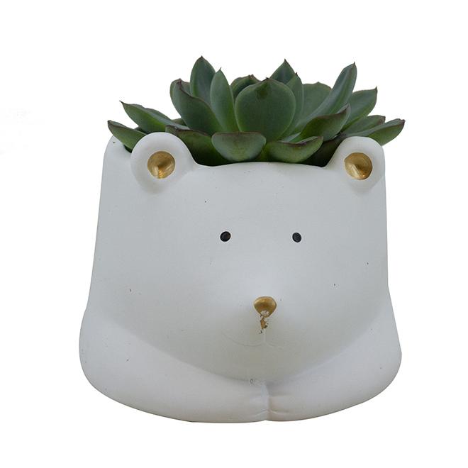 Succulent - Polar Bear Pot - Ceramic