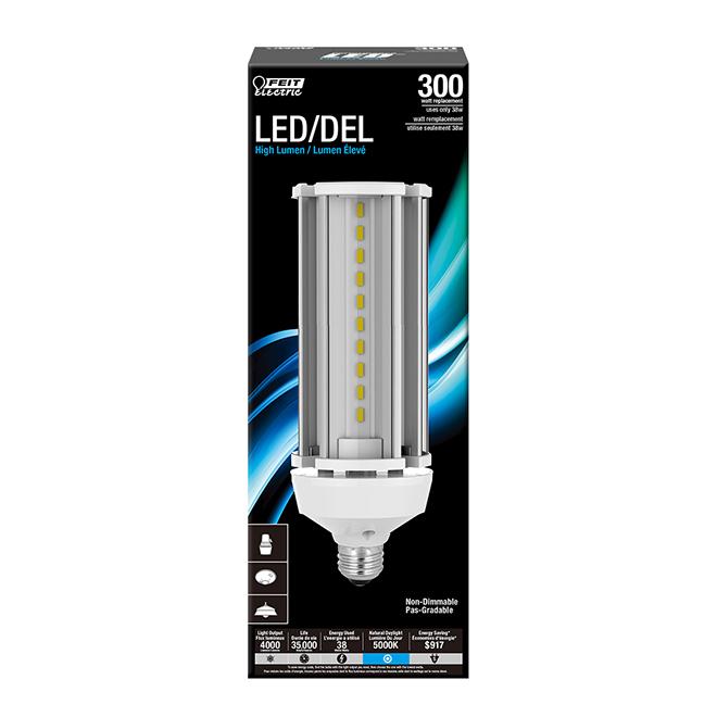 Ampoule DEL extérieure Feit Electric, 38 W, lumière du jour