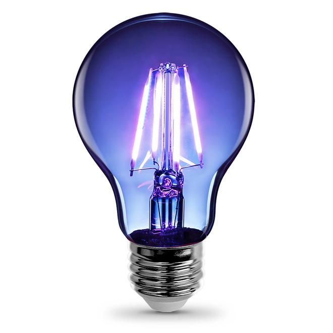 Ampoule DEL A19, Intensité non-variable, bleu, PK1