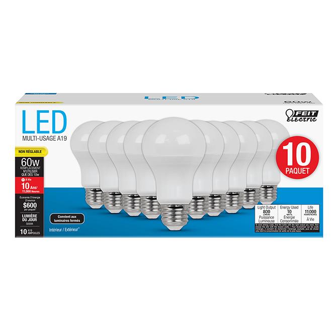 Ampoule A19 E26 Feit Electric, lumière du jour, 10/pqt