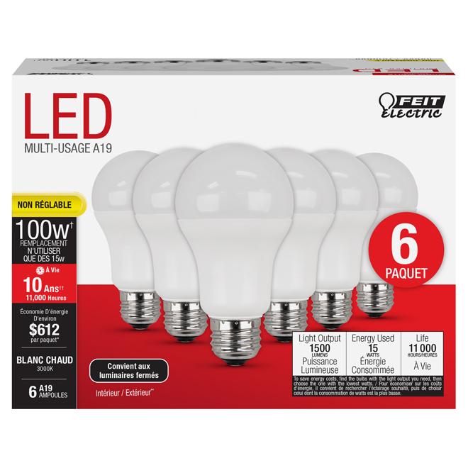 Ampoule DEL, A19, E26, 16 W, plastique, blanc chaud, 6/pqt