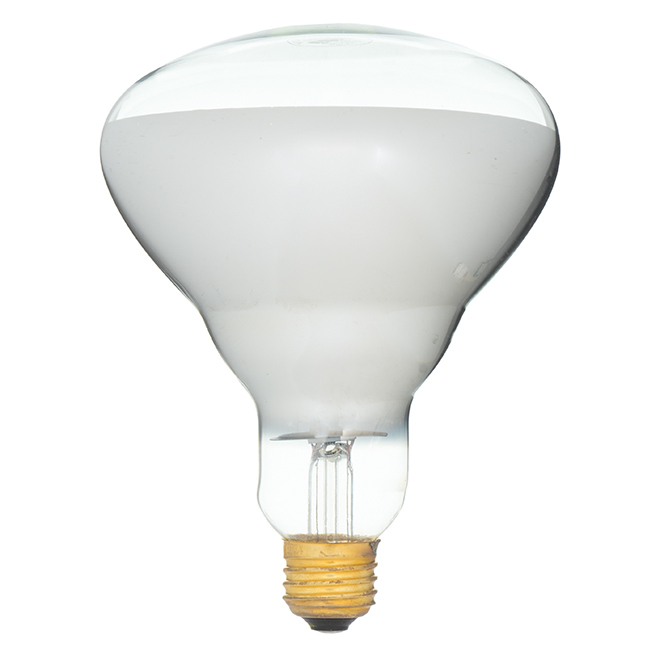 Feit Electric Incandescent Bulb - E26 R40 - 250 W