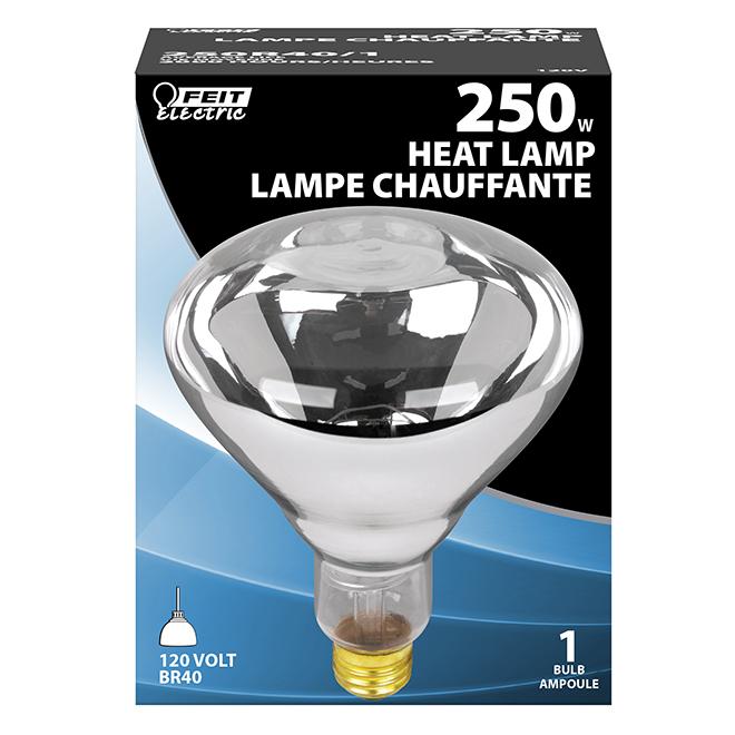 Ampoule incandescente Feit Electric, E26 R40, 250 W