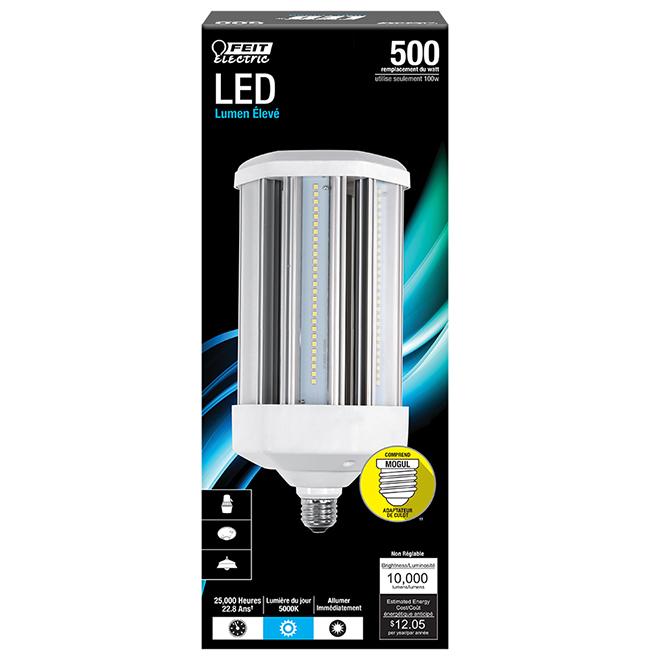 Ampoule DEL Feit Electric, E26/E39, 100 W, lumière du jour