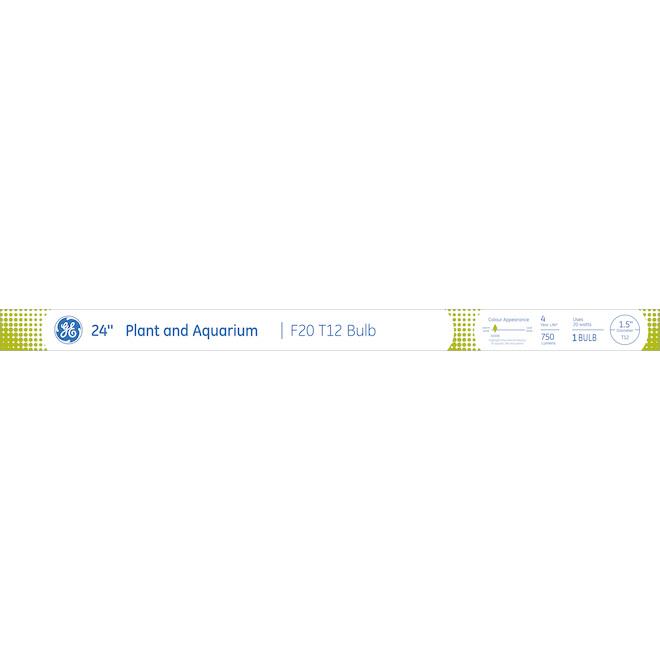 "Tube fluorescent linéaire F20T12, 24"", 20W, blanc froid"