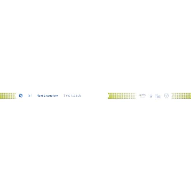 """Tube fluorescentF40 T12, 48"""", 40W, verre, blanc froid"""