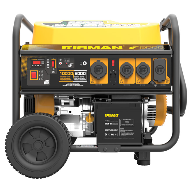 Whisper Series Gas Portable Generator - 10,000/8,000 W