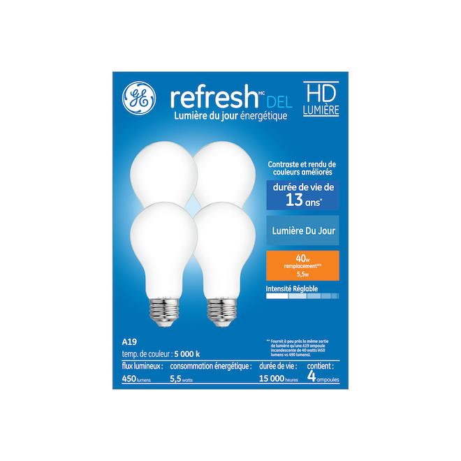 Ampoule DEL, A19, 6 W, verre, lumière du jour, 4/pqt