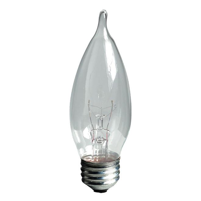 Ampoules incandescentes GE, CAC, 40 W, 6/pqt, blanc doux