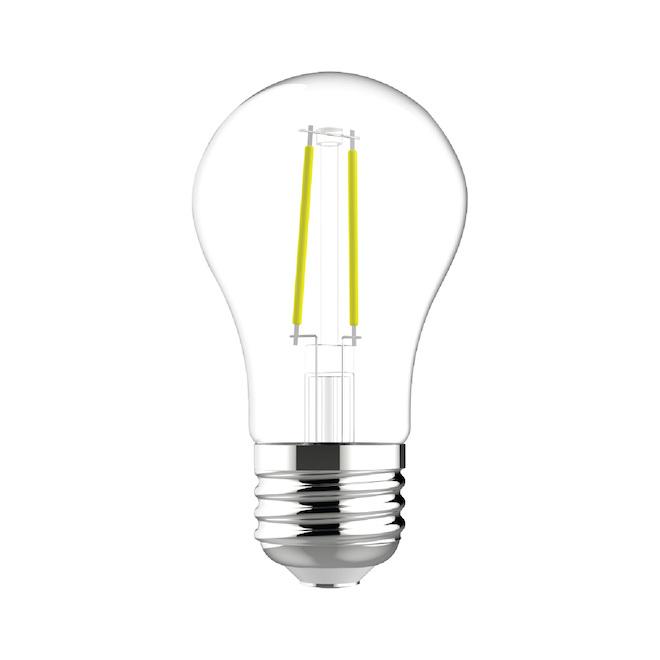 Ampoule DEL GE, A15, 4 W, blanc doux, 2/pqt