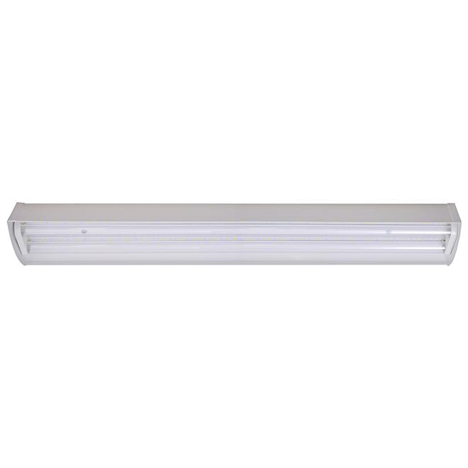 Tube fluorescent de croissance, fruit et fleur, 40 W, 24''