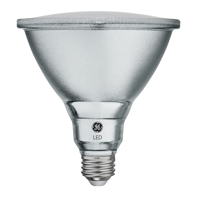 Ampoule DEL, PAR38, 15 W, métal, blanc chaud, 2/pqt