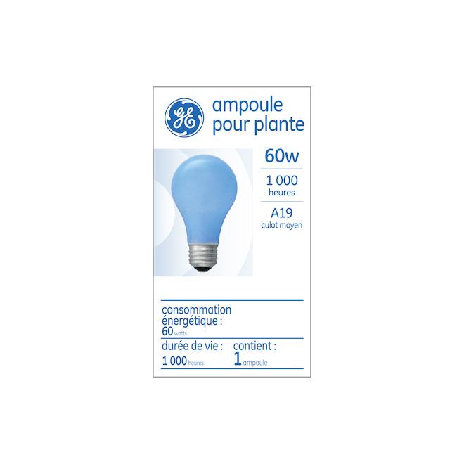 Ampoule halogène pour plantes GE, A19, 60 W, 1/pqt, blanc