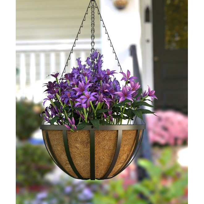 """with coco fiber"" Hanging Planter - Black"