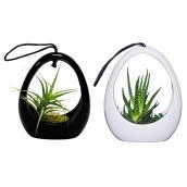 Pot suspendu pour succulents, Live Trends, céramique, 5''